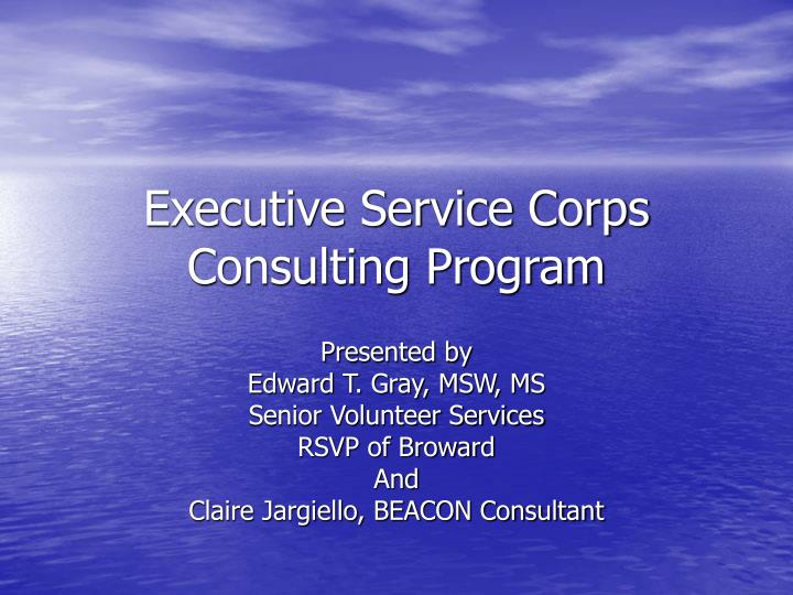 executive service corps consulting program n.