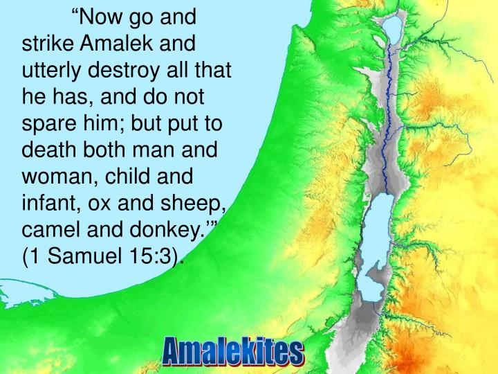 """""""Now go and strike Amalek and utterly destroy all that he has, and do not spare him; but put to death both man and woman, child and infant, ox and sheep, camel and donkey.'"""" (1 Samuel 15:3)."""