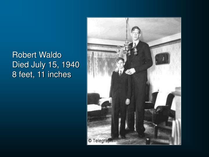 Robert Waldo