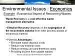 environmental issues economics