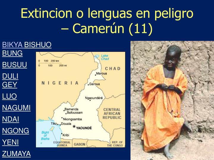 Extincion o lenguas en peligro – Camerún