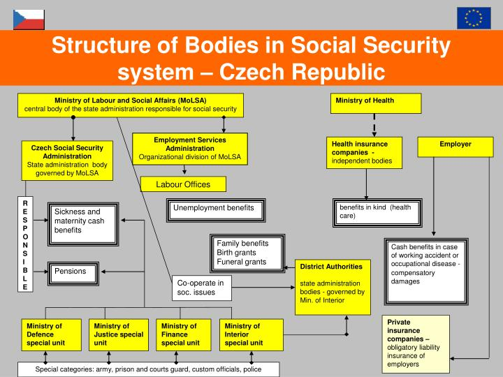 Structure of Bodies in Social Security