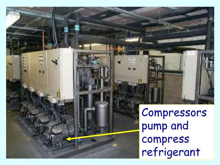 Compressors pump and compress refrigerant