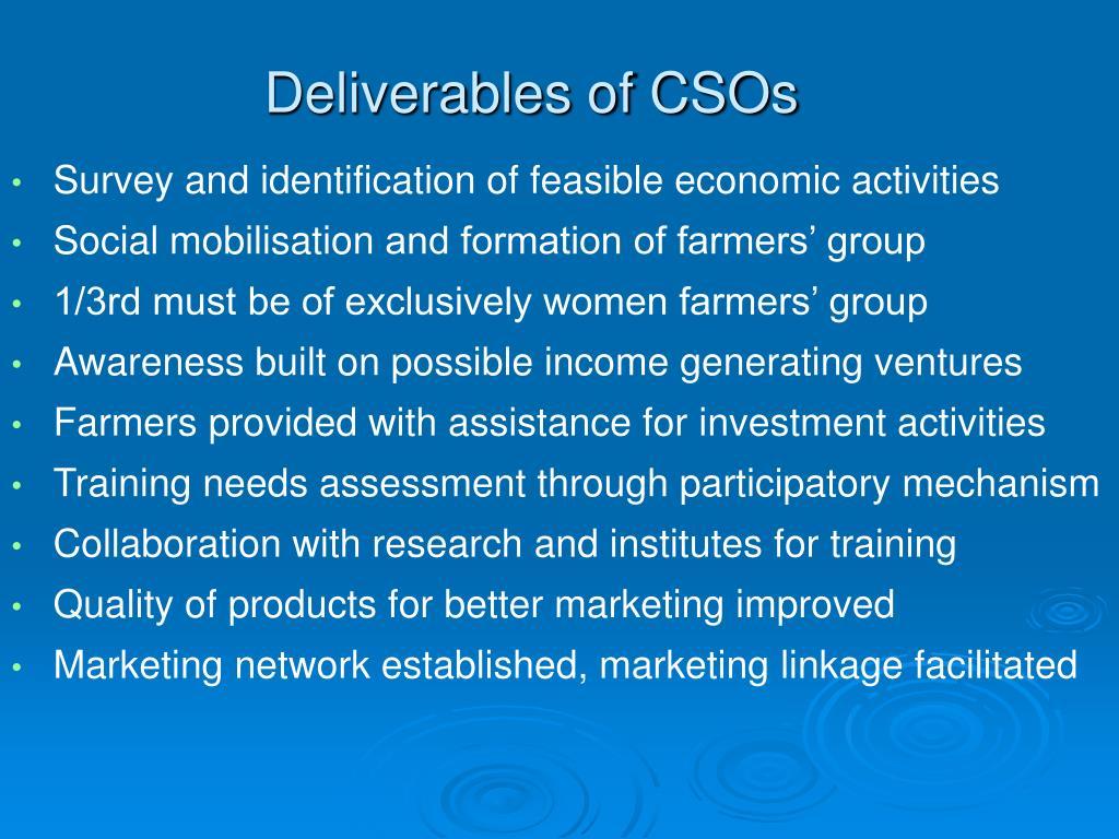 Deliverables of CSOs
