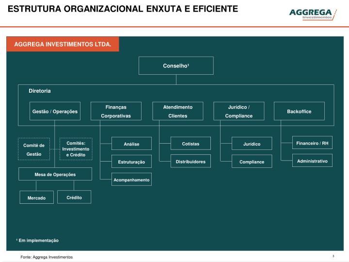 Estrutura organizacional enxuta e eficiente