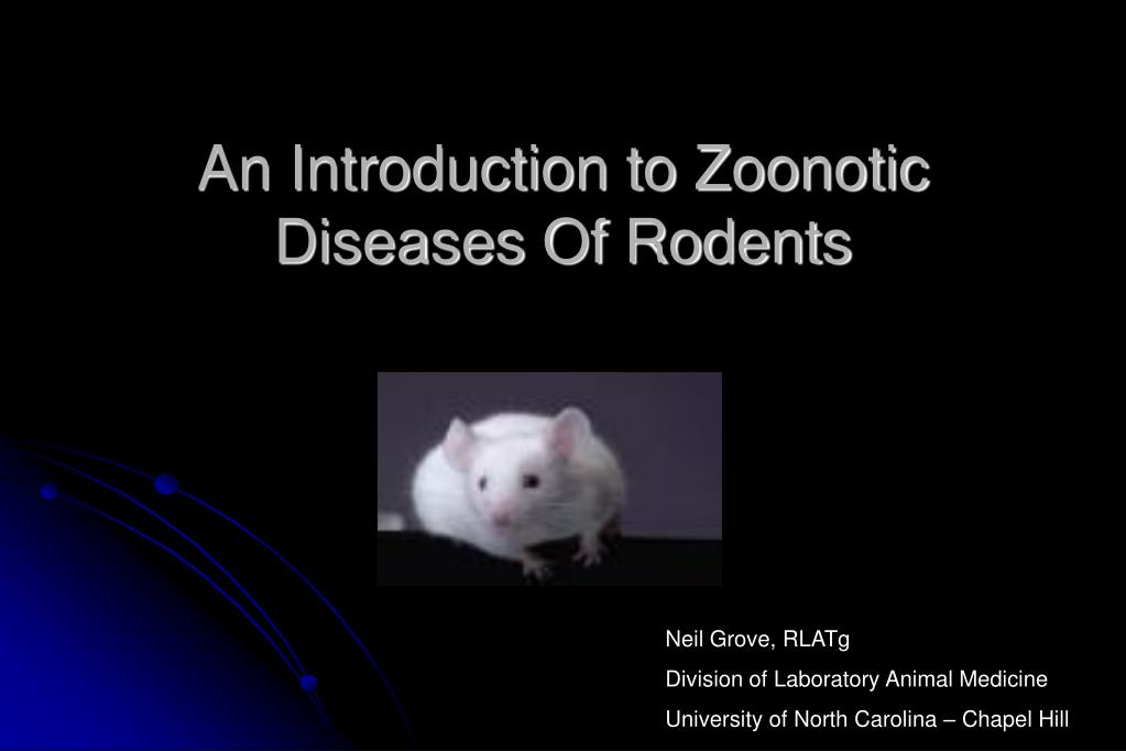 an introduction to zoonotic diseases of rodents l.