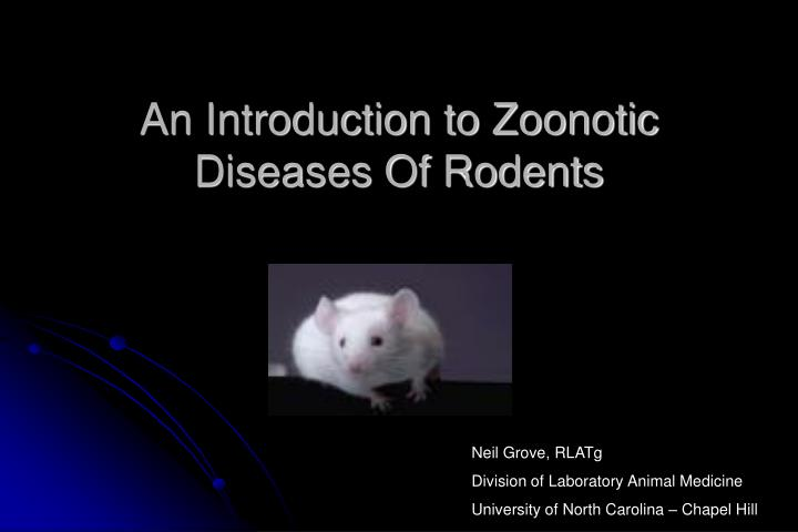 An introduction to zoonotic diseases of rodents