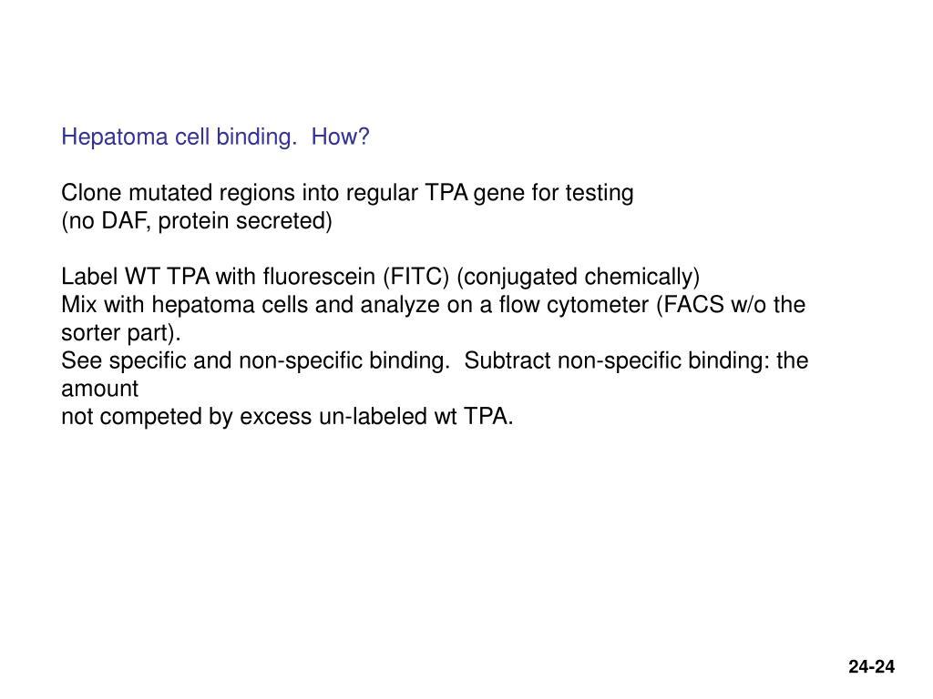 Hepatoma cell binding.  How?