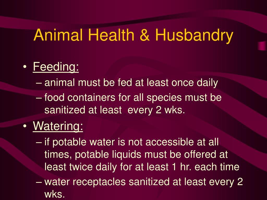 Animal Health & Husbandry