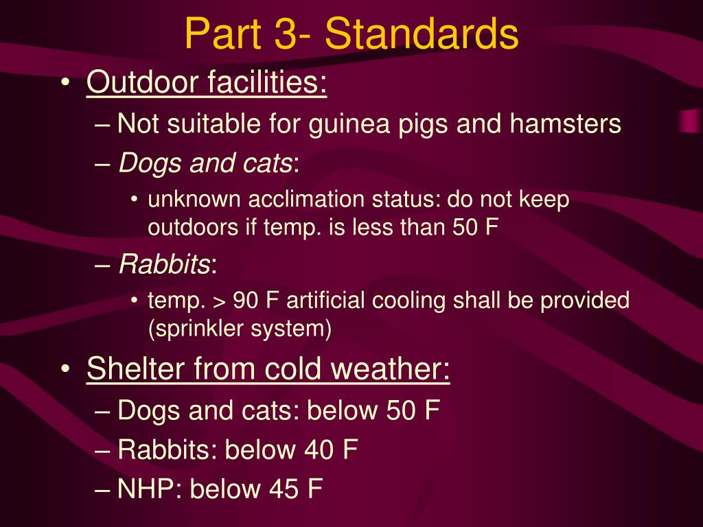 Part 3- Standards