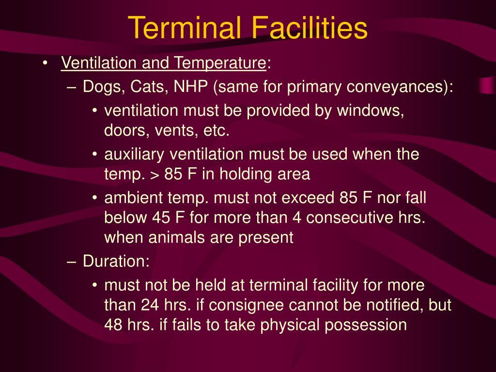 Terminal Facilities