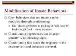 modification of innate behaviors