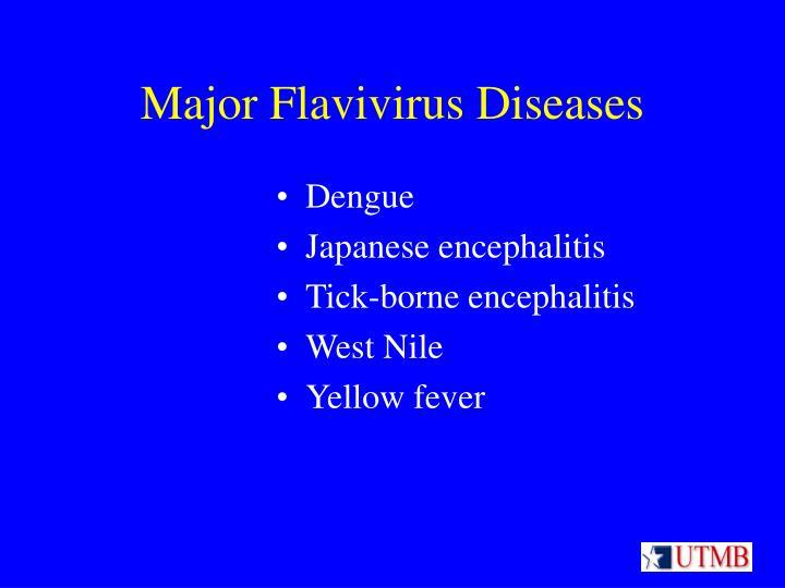 Major flavivirus diseases