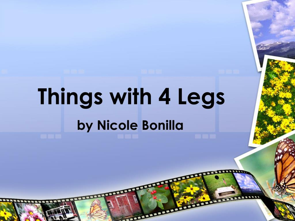 things with 4 legs l.