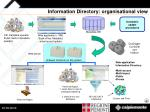 information directory organisational view
