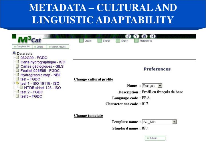 METADATA – CULTURAL AND LINGUISTIC ADAPTABILITY