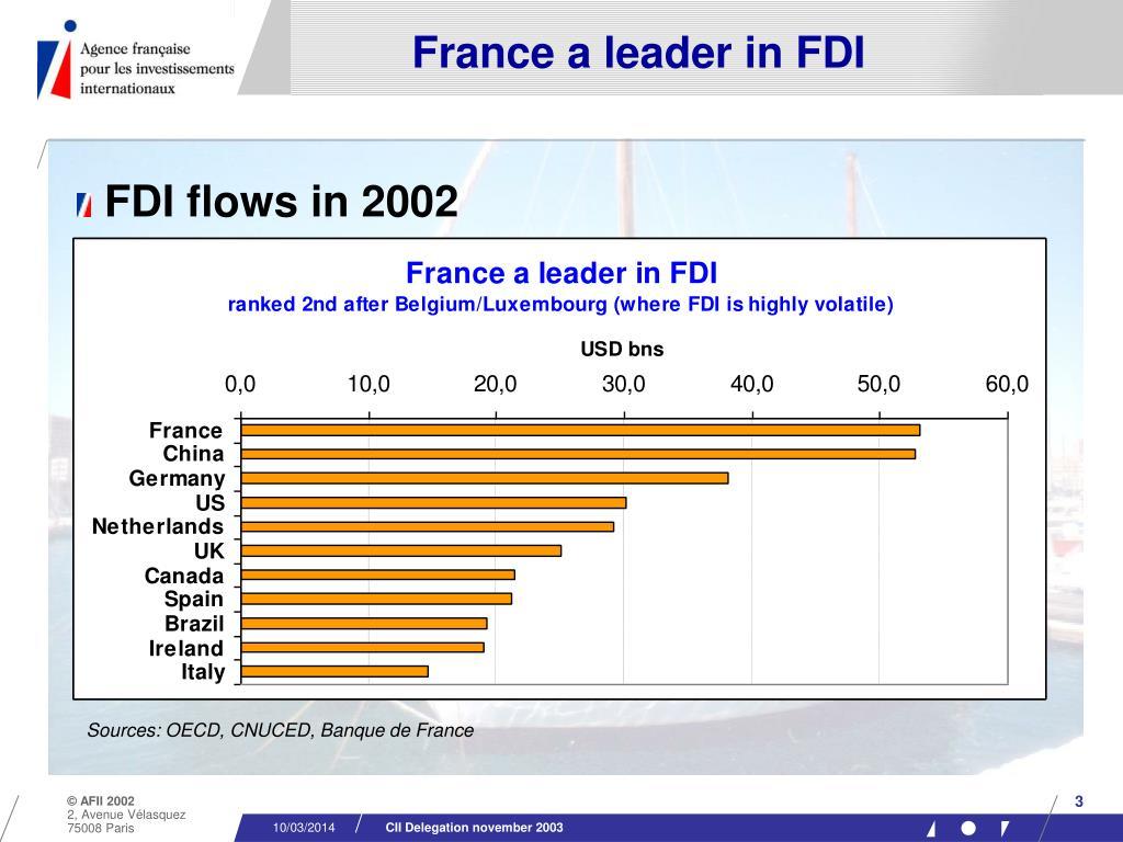 France a leader in FDI
