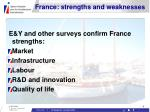 france strengths and weaknesses