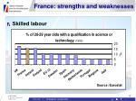 france strengths and weaknesses12