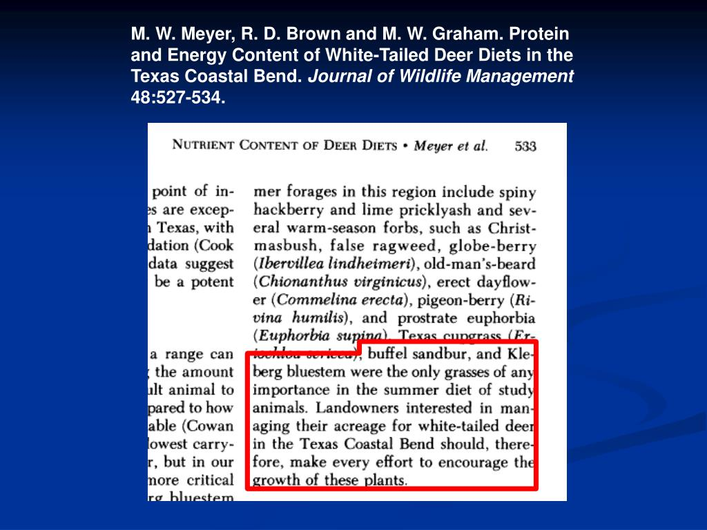 M. W. Meyer, R. D. Brown and M. W. Graham. Protein and Energy Content of White-Tailed Deer Diets in the Texas Coastal Bend.