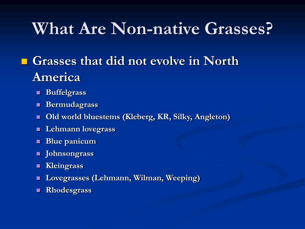 What Are Non-native Grasses?