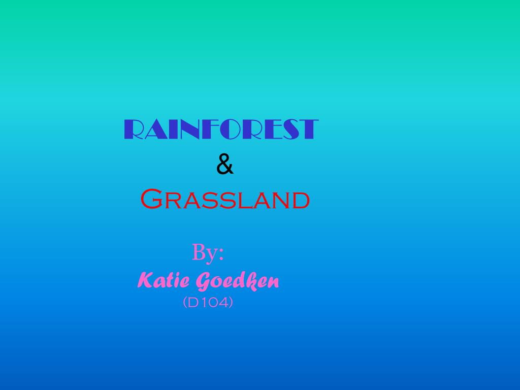 rainforest grassland l.