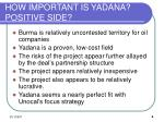 how important is yadana positive side