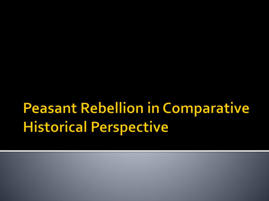 peasant rebellion in comparative historical perspective l.