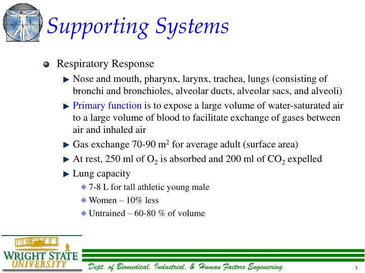 Supporting Systems