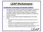 leap workstreams6