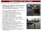 challenges of the niger delta