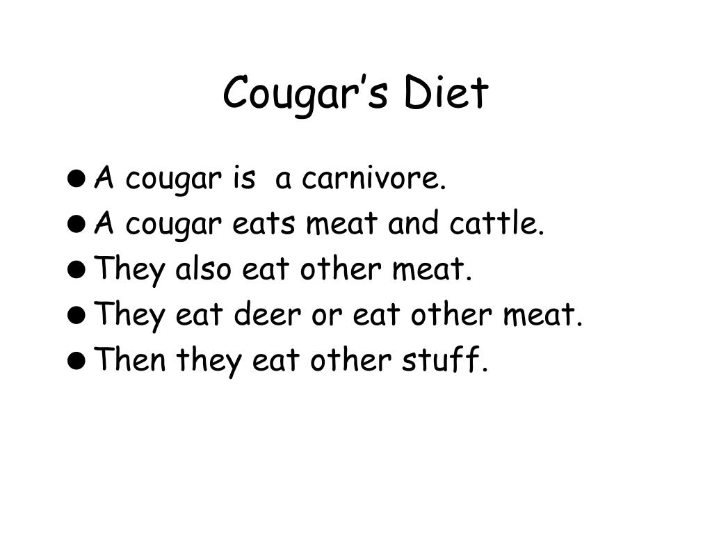 Cougar's Diet