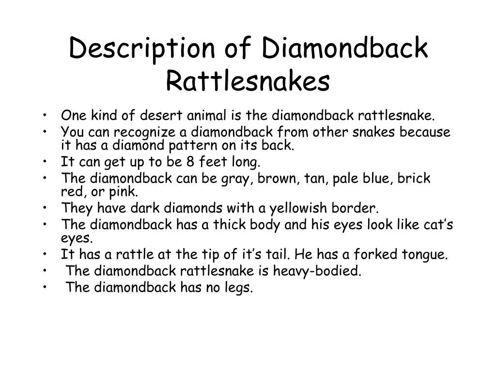 Description of Diamondback Rattlesnakes