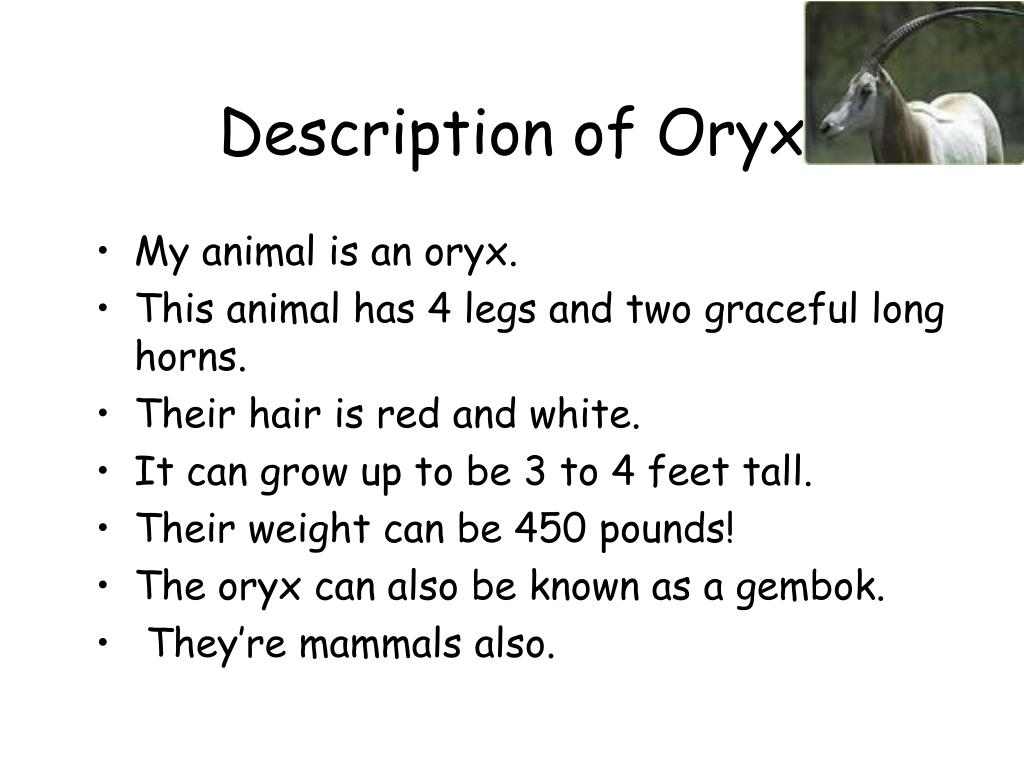 Description of Oryx
