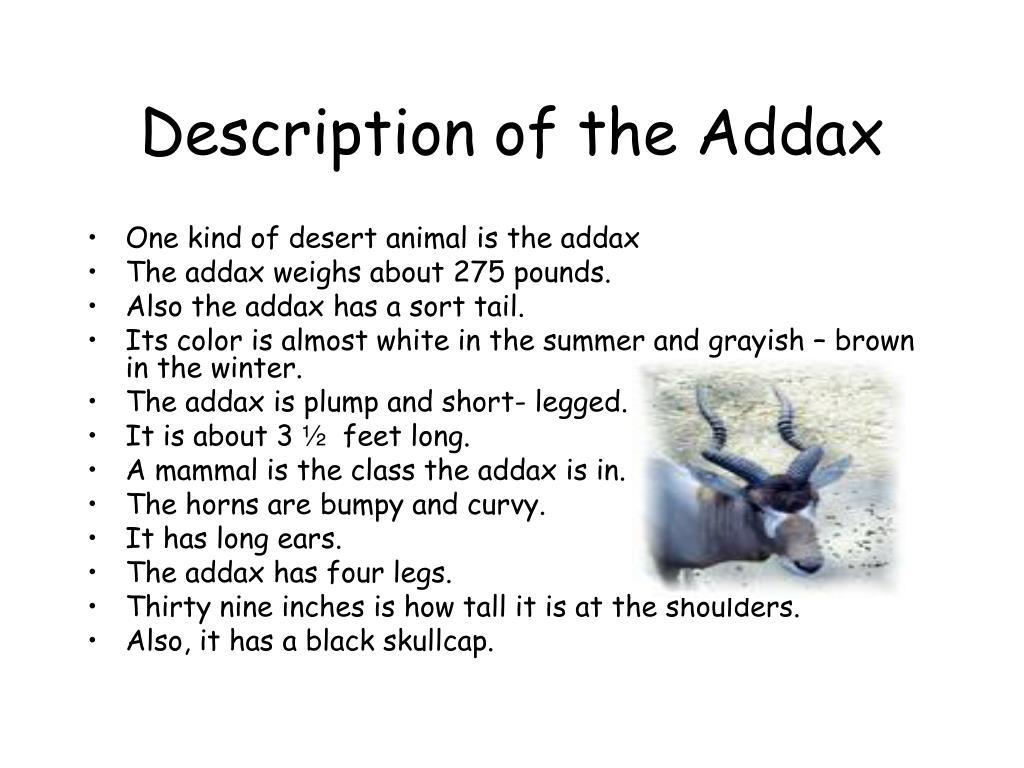 Description of the Addax