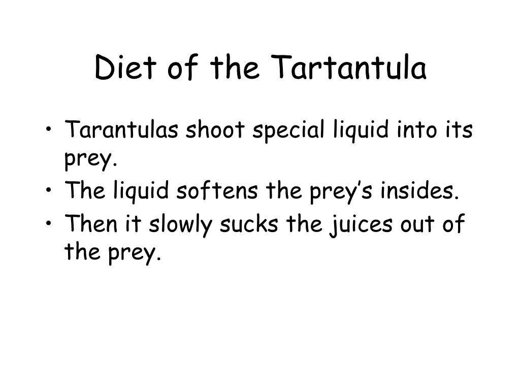 Diet of the Tartantula
