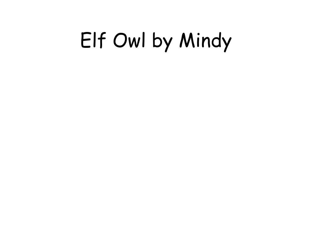 Elf Owl by Mindy