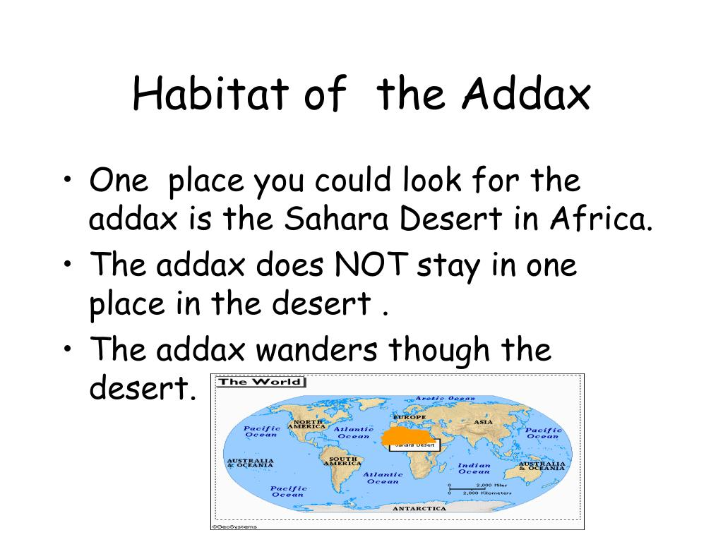 Habitat of  the Addax