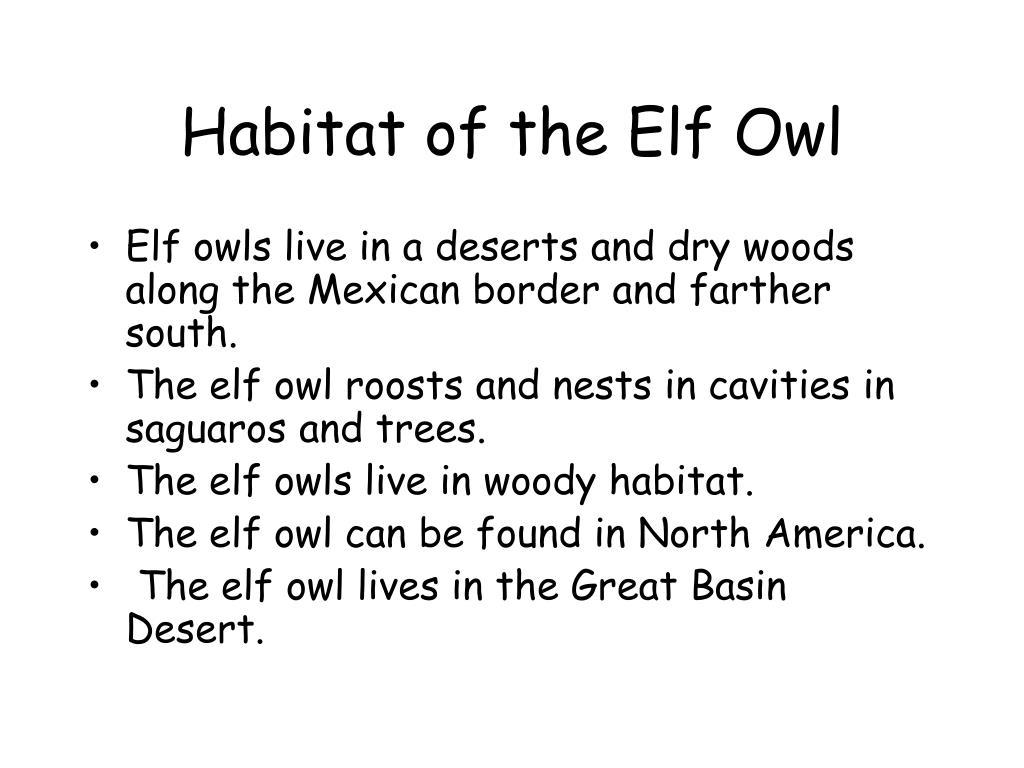 Habitat of the Elf Owl