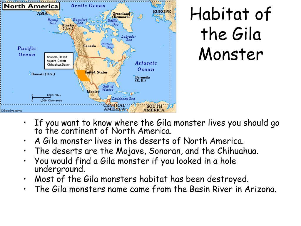Habitat of the Gila Monster