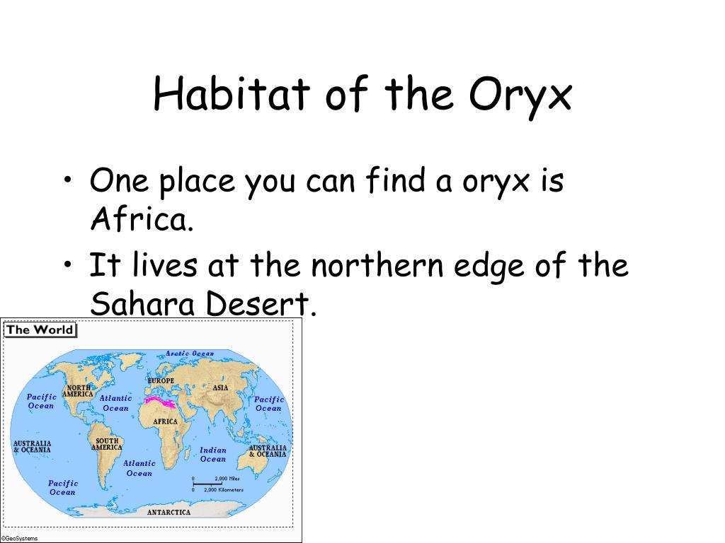 Habitat of the Oryx