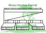 binary number format