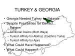 turkey georgia