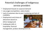 potential challenges of indigenous service providers