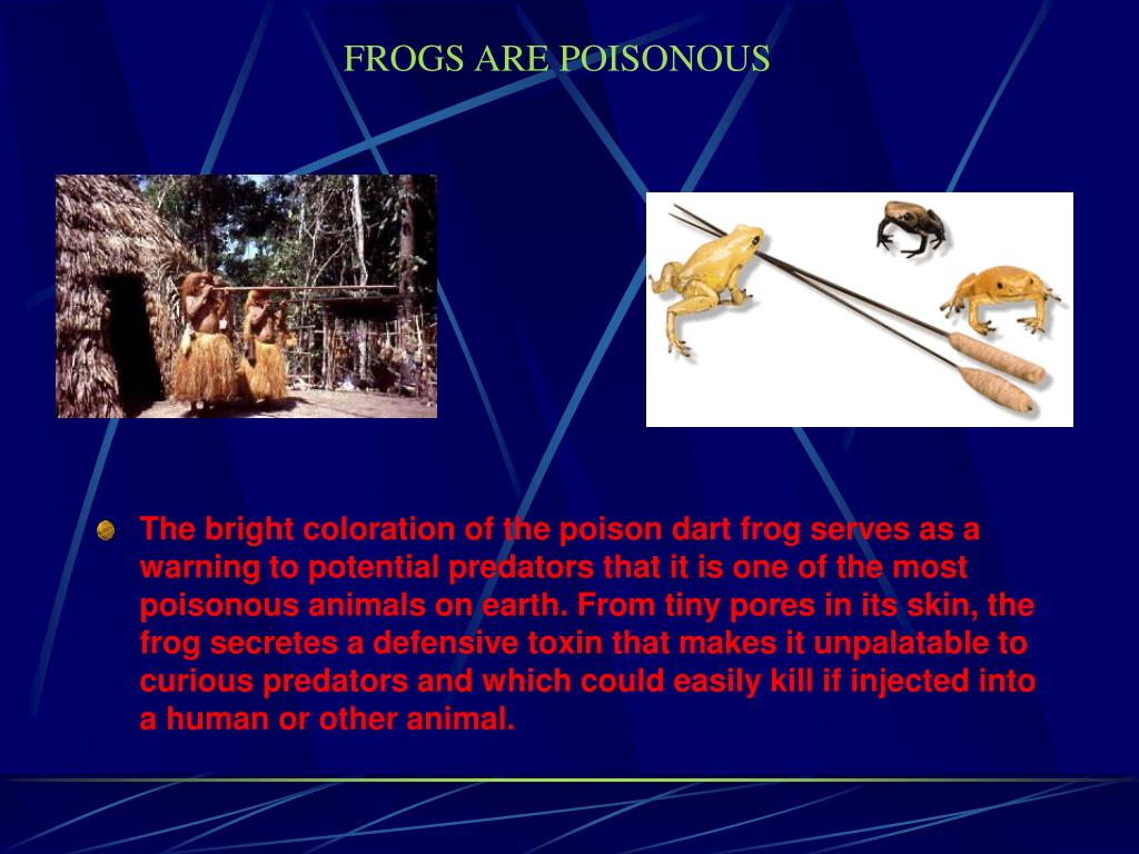 FROGS ARE POISONOUS