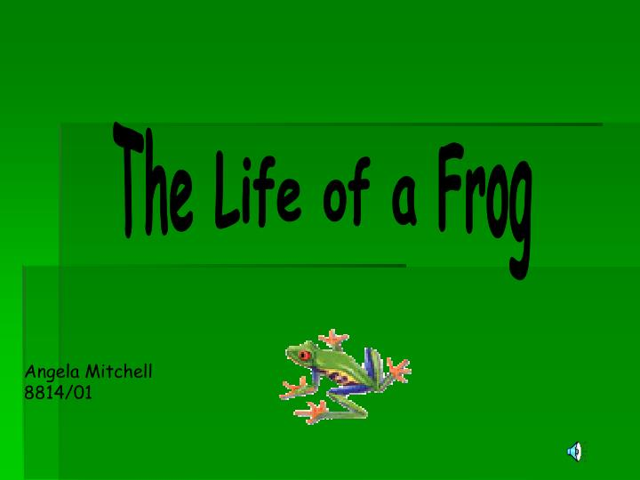 The Life of a Frog