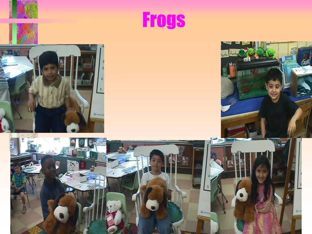 frogs l.