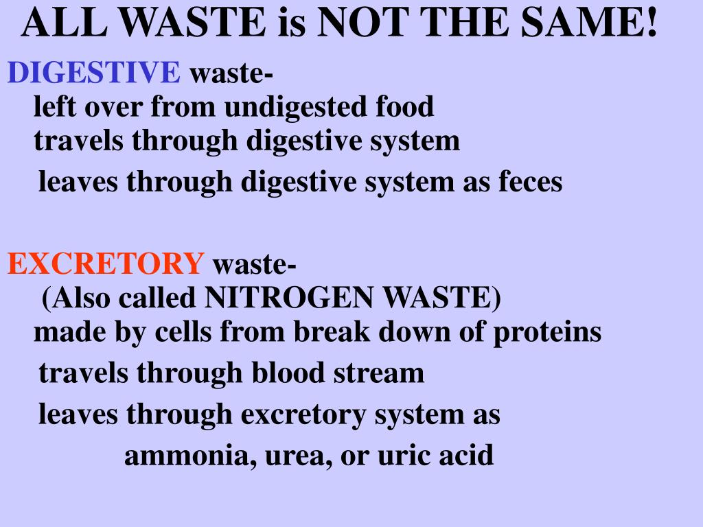 ALL WASTE is NOT THE SAME!