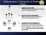 radicalization 3 categories of academic theory