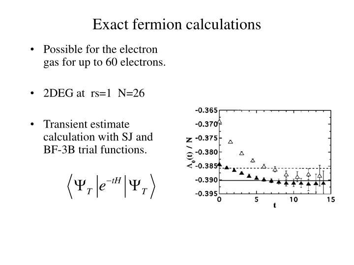 Exact fermion calculations